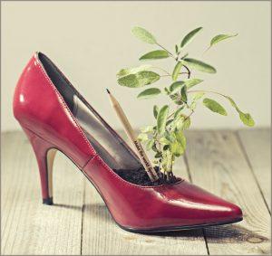 L'Sprout és un llapis plantable que conté llavors de flors, hortalizes o plantes aromàtiques.