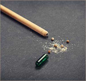 Càpsula que conté llavors al llapis Sprout